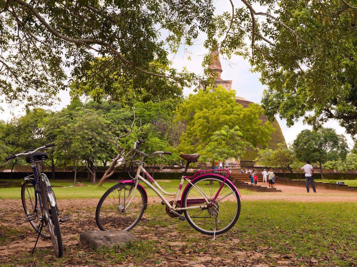 Cycling in Polonnaruwa City