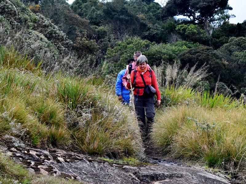 Kirigalpotha Mount Exploration