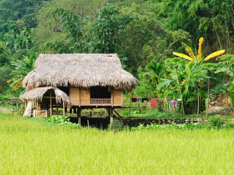 "A Village in Sri Lanka, ""Gods Village"""