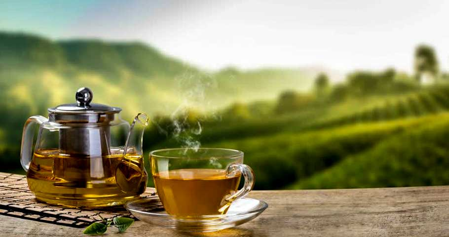 A Visit To The Rothschild's Tea Factory