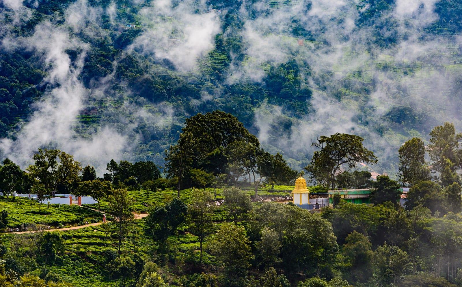 Kotagiri Landscape Tour
