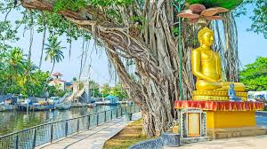 Culture Walk - Explore the best of Colombo