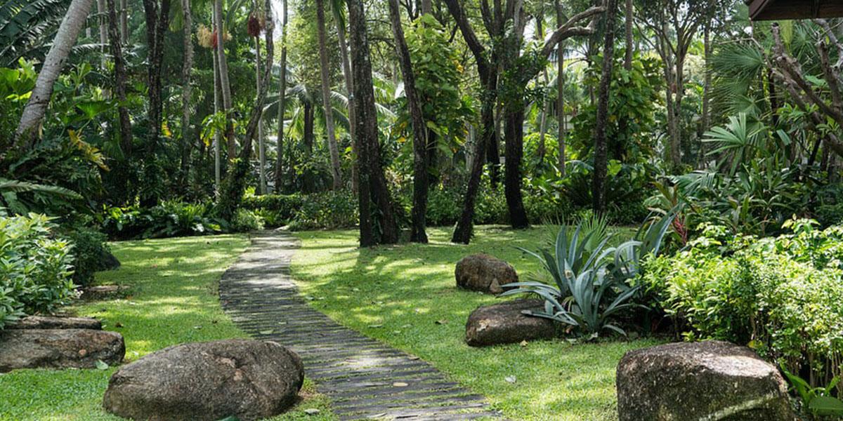 Brief Gardens By Bevis