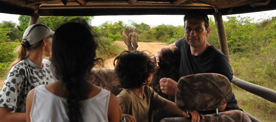 A Private Safari With Noel Rodrigo