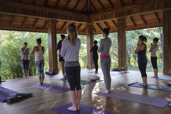 Quantum Yoga With Lara Bauman