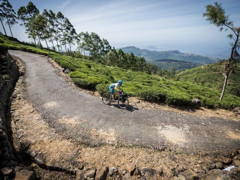 Tea Trail – cycling from Nuwara Elliya to Kandy