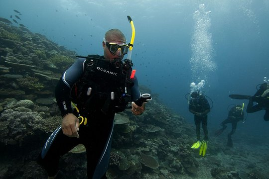 Scuba Diving - Experienced Divers &   Beginners