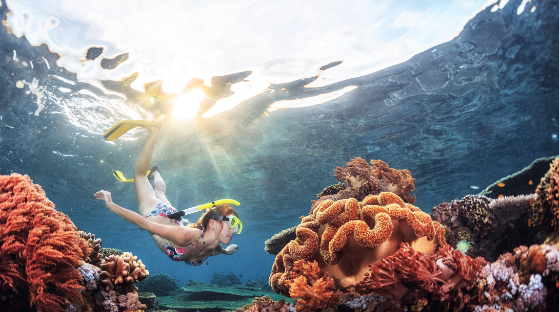 Snorkelling in Bentota